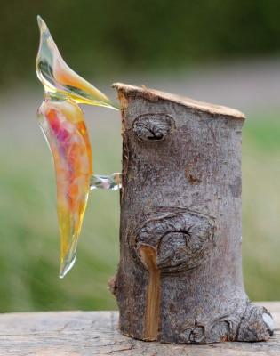 Alwin Overwater - Glazen Specht
